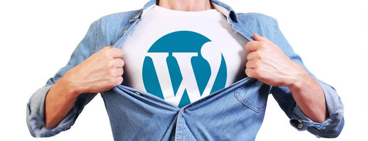 The Benefits of Using WordPress To Power Your Business